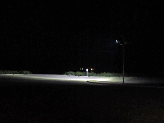 Solar Flood Light at Night