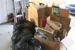 Holiday Waste