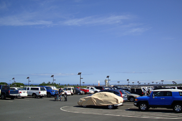 turtle friendly solar powered parking lot lights