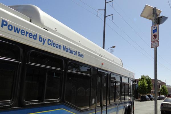 Solar Bus Stop Light
