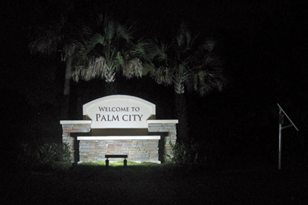 Palm City Solar LED Light