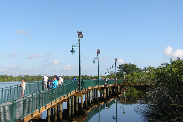 Solar Pathway Lights for Port St Lucie