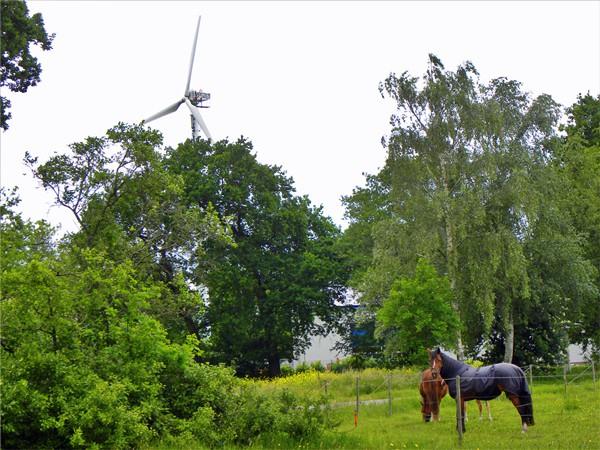 WindGermany.jpg