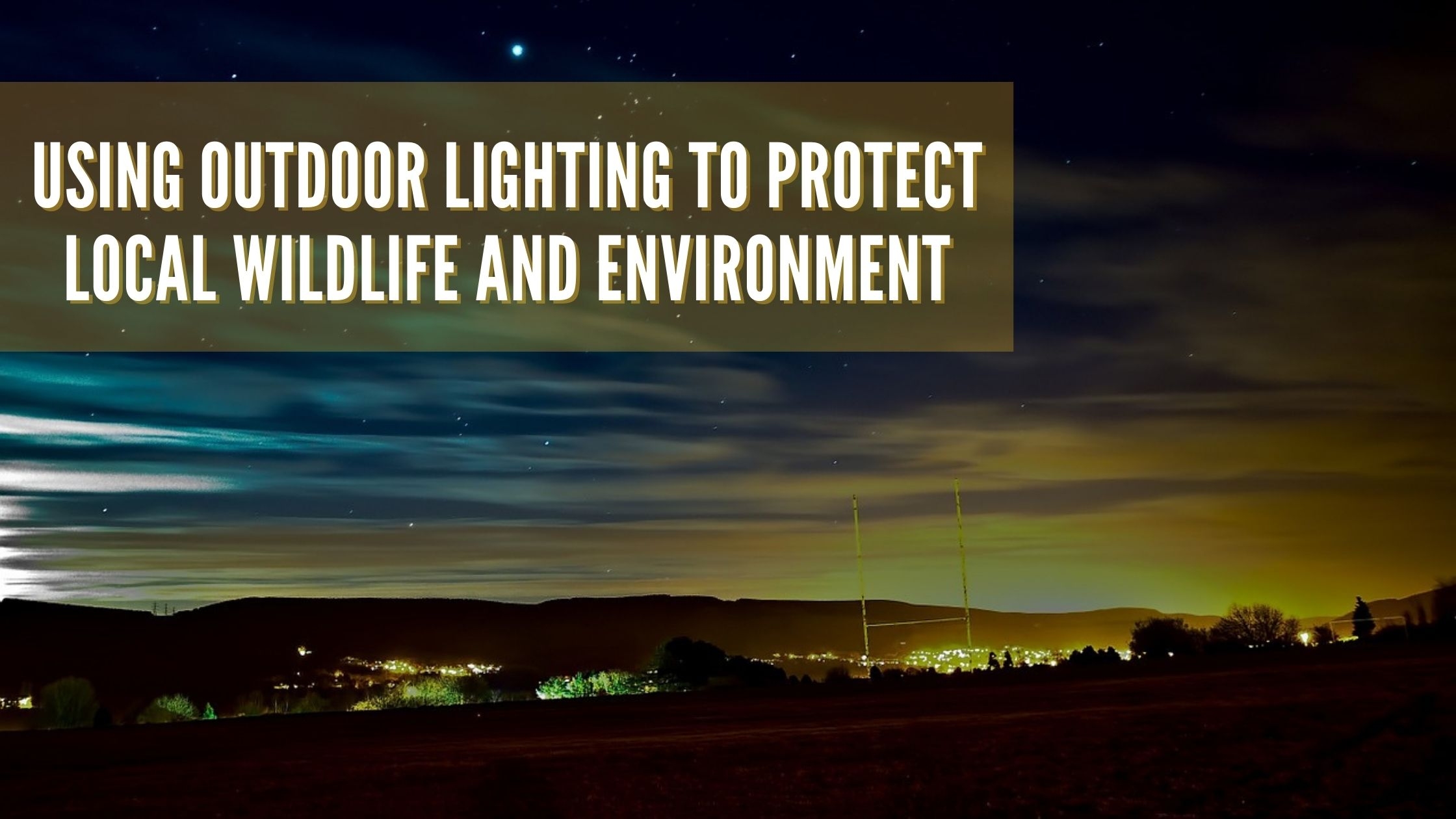Using Outdoor Lighting to Protect Local Wildlife and Environment