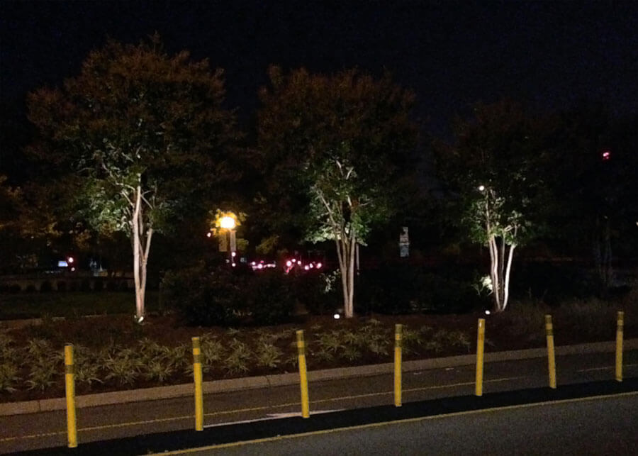 Pathway Landscape Solar Powered LED Lighting Systems | SEPCO