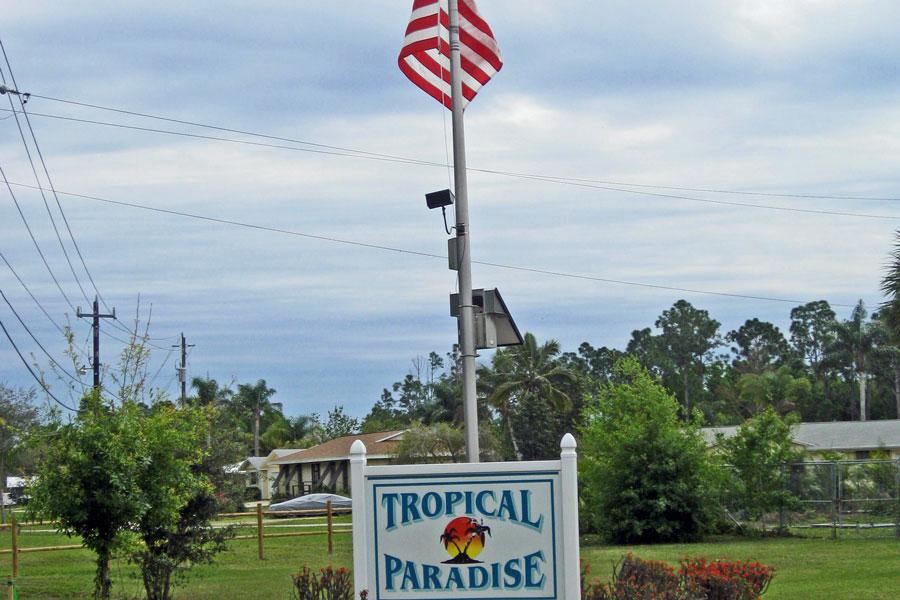 Tropical-Paradise-3